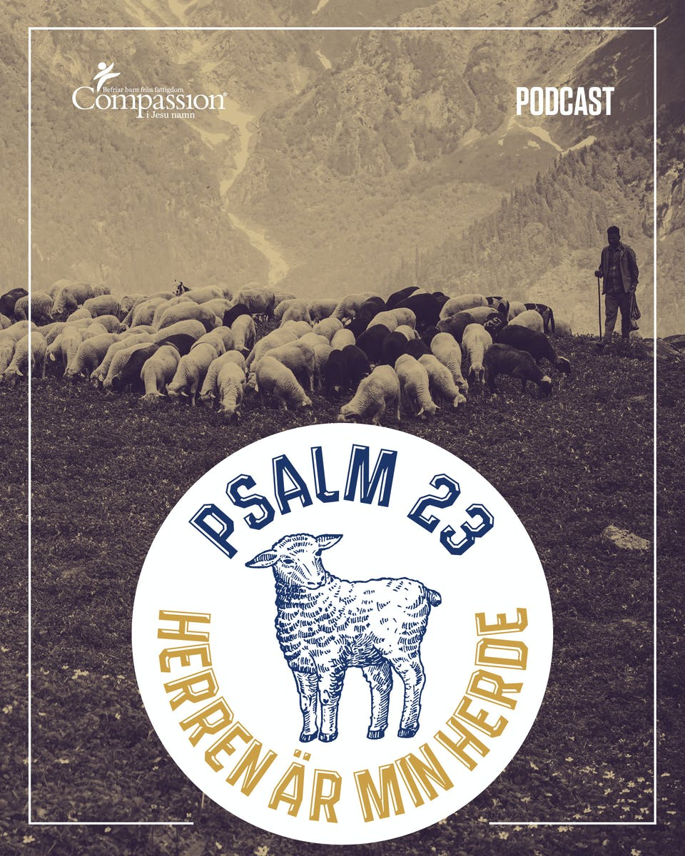 MM - Promo - Predikningar Psalm 23 - Promo.jpg